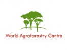 Agroforestry - So what has agroforestry got to do with forests?