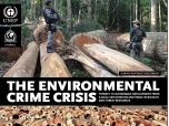 Environmental crime 'crisis' threatens global security, report says