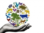 Biodiversity Day Celebrated Around the World