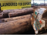 Illegal tropical timber may be circulating in Ireland