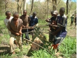 700% EXPANSION OF CERTIFIED COMMUNITY-MANAGED FORESTS IN TANZANIA