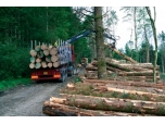 Coillte Risk Losing 'Eco label'
